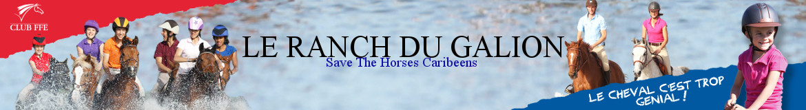 Ranch du Galion/Save the Horses Caribeens - Saint-Martin